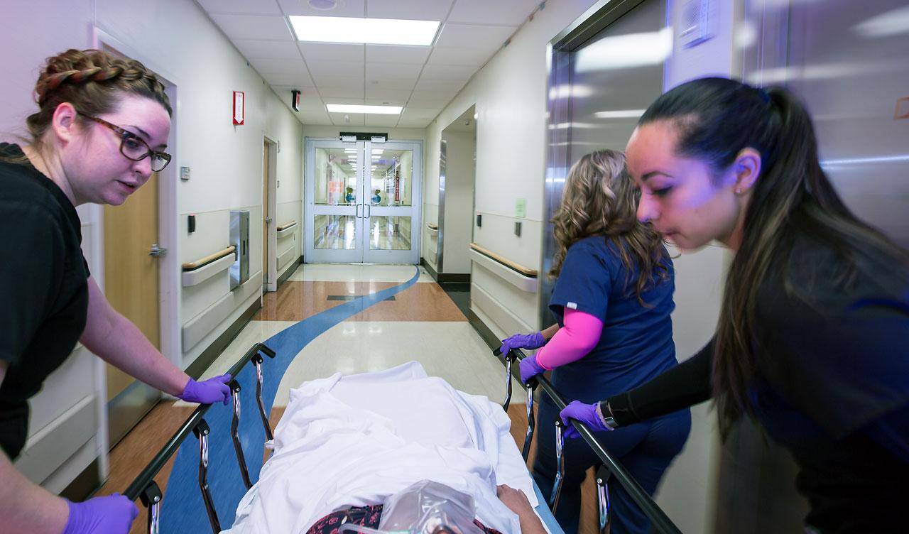 Hsc Health Care System