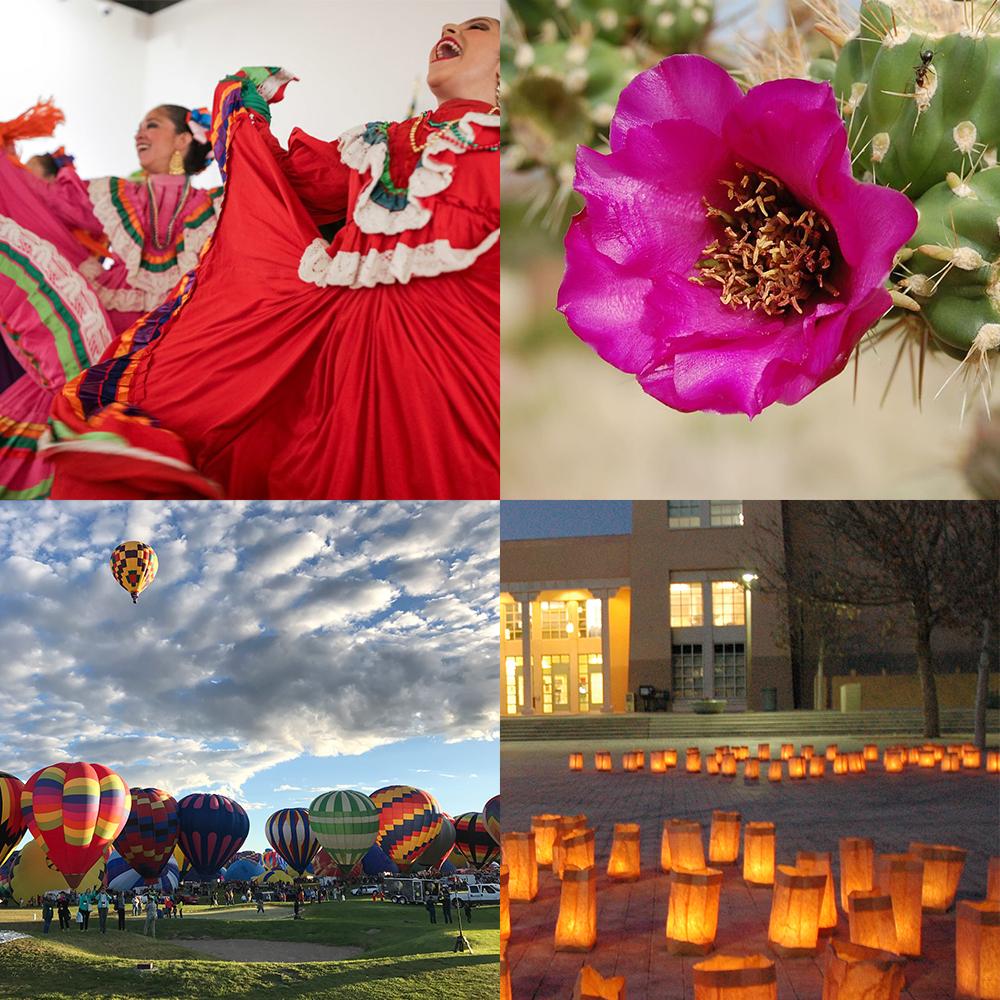 新墨西哥陆地气球西班牙舞者和仙人掌花的快照