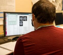Estudiante mirando cerebros en computadora.