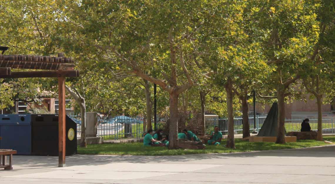 Alunos comendo fora, sob as árvores.