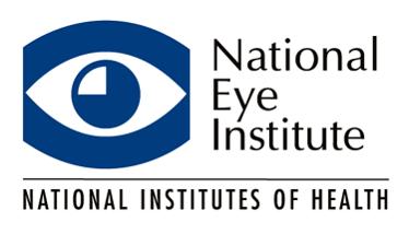 instituto nacional de olhos