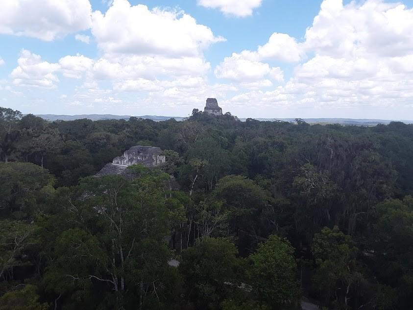 Tikal và rừng rậm