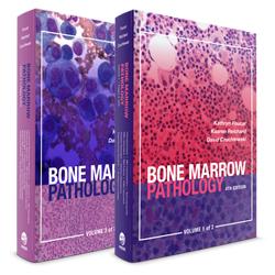 骨髓病理学:ASCP 综合血液病理学系列 4