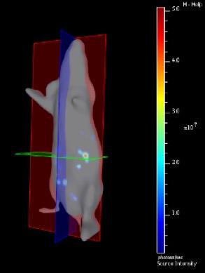 foto de imaginería científica