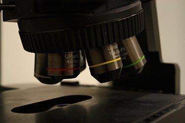 صورة مقربة لمجهر