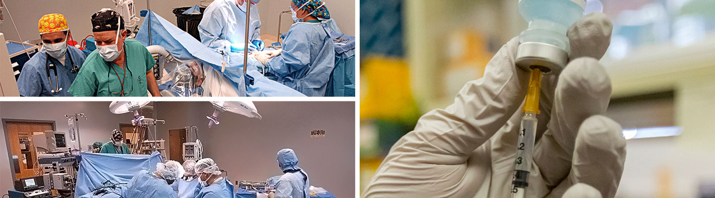 Apply for Residency ::   School of Medicine - Anesthesiology